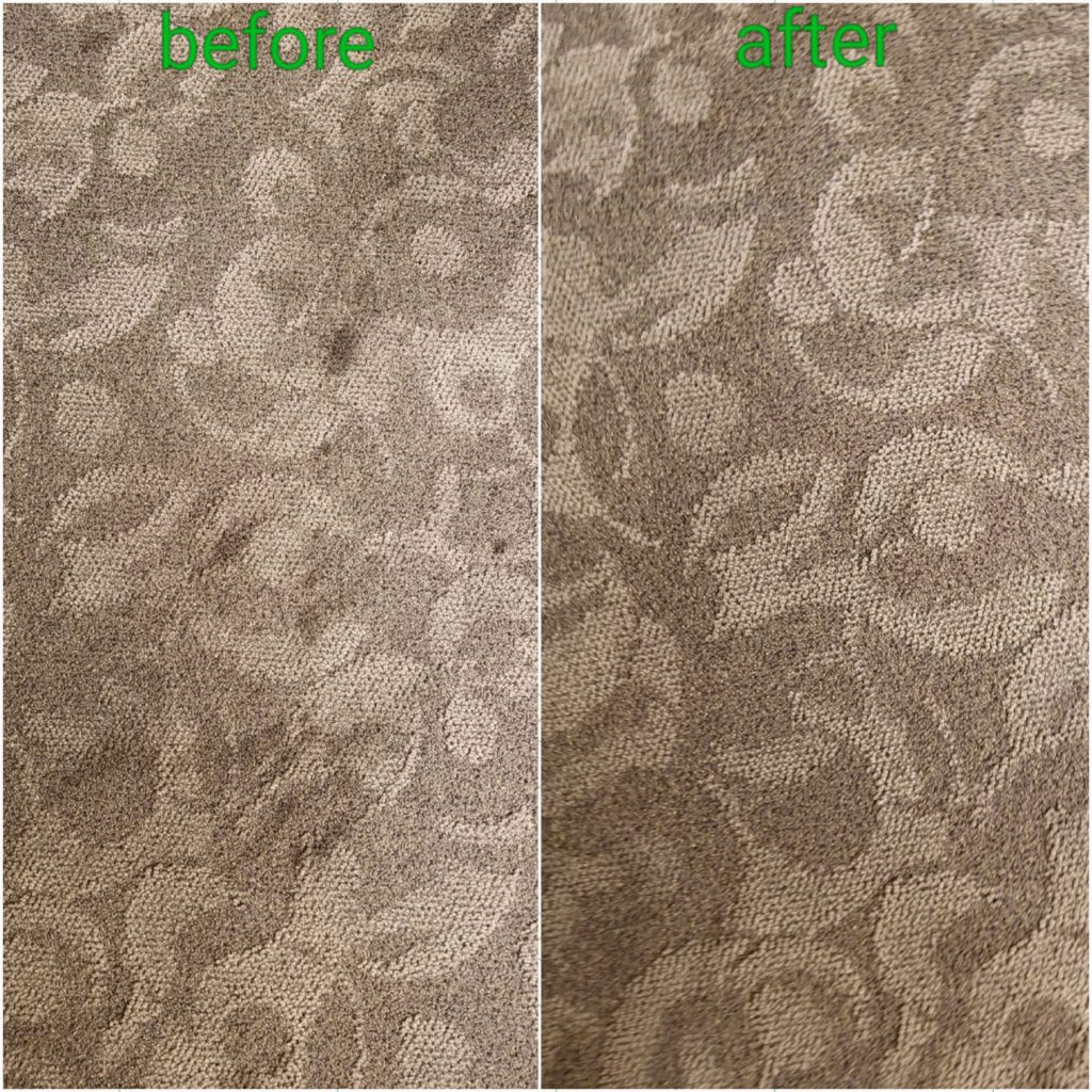 The Best Carpet Cleaning in Santa Rosa Beach